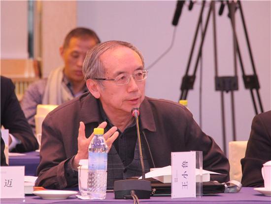 中国改革基金会国民经济研究所副所长、研究员王小鲁