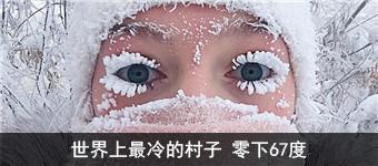 中国客机首降南极 游客在企鹅群前合影