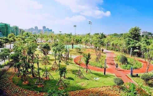 对望鼓浪屿欣赏世界杯 厦门最美海景足球公园开园