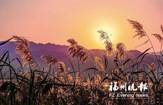闽江河口湿地美景如诗如画