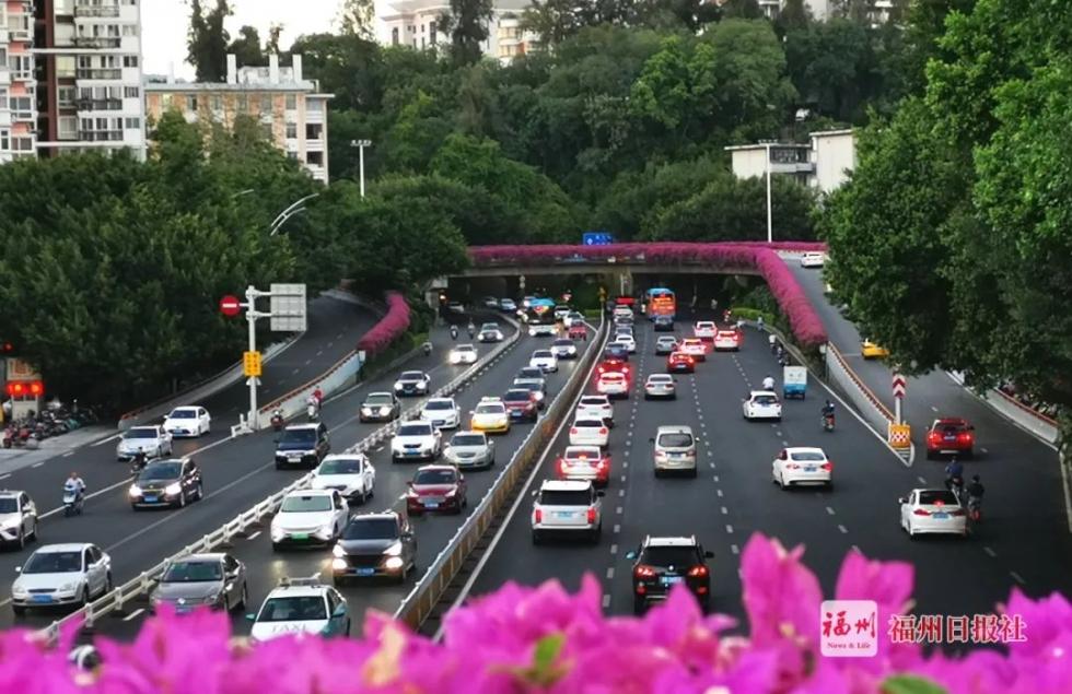 福州象山隧道將變雙向10車道!尤溪洲大橋也要改造!