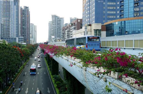 运营步入第11个年头 厦门BRT客流量突破10亿人次