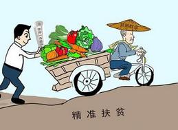 """漳州首推""""一店一户一码""""电商扶贫新模式"""