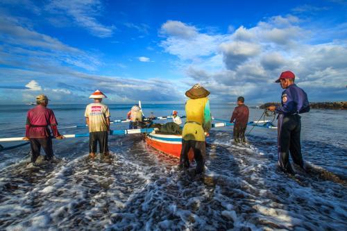 全国第一! 福建休闲渔业进出口额占全国近三成