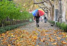 厦门弱冷空气如缕不绝 周日或送来降雨、降温和大风
