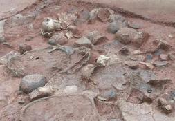 厦大师生平潭考古 发现3000多年前商周时期聚落遗址