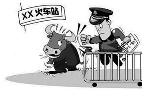 """两部门整治厦门北站拉客""""黄牛"""" 半个月查处黑车24辆"""