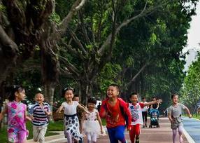 福州应邀联合国高层对话 向世界分享森林城市建设经验