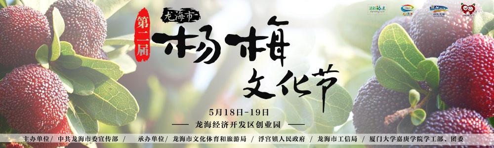漳州龙海杨梅文化节 杨梅熟了20个采摘点等你来