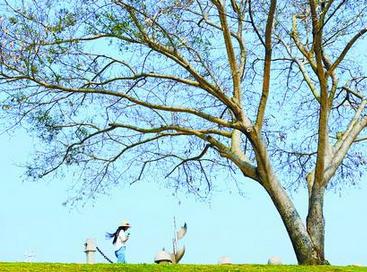 今年1到4月全国重点城市空气质量排行 厦门排第八