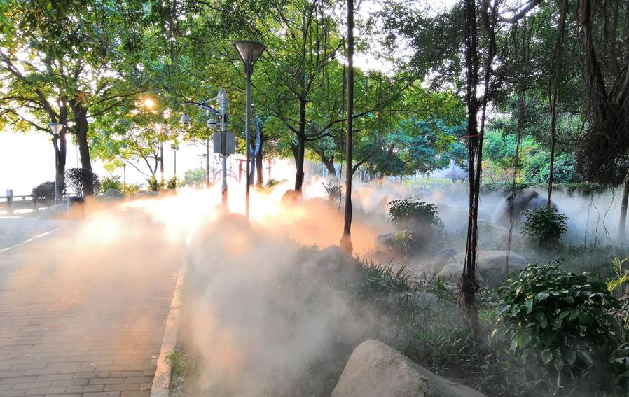 闽江公园林下空间改造完成 雾气缭绕仿若人间仙境