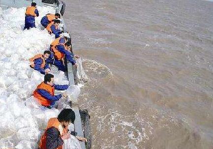 厦门首次大规模增殖放流蟹类 300万尾梭子蟹苗入海