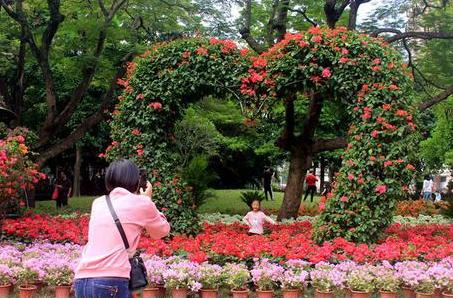 漳州市區中山公園建園100周年 花團錦簇盛裝開放