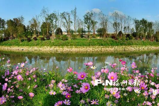 福州台屿河串珠公园花开正艳 公园新姿待客来