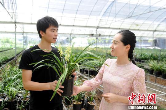 """大学生返乡开""""网店""""卖兰花 助力南靖乡村振兴"""