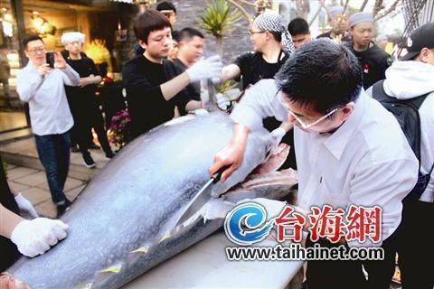 重600斤的蓝鳍金枪鱼来厦 拍卖价12万吃一口要花37元