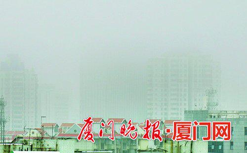 ■今日清晨岛内大雾弥漫,能见度较低。