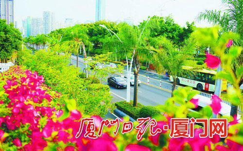 昨日厦门多云,图为湖滨西路景观。  (本报记者 姚凡 摄)