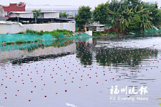 轮船港内铺设石墨烯光催化网,增加水体中溶解氧。