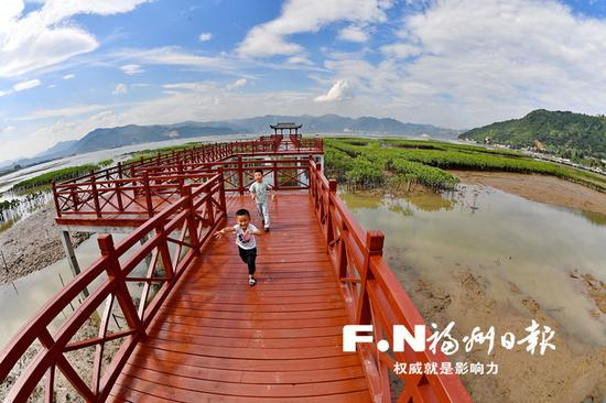 市民置身于福州最大的红树林近距离感受大海的美。