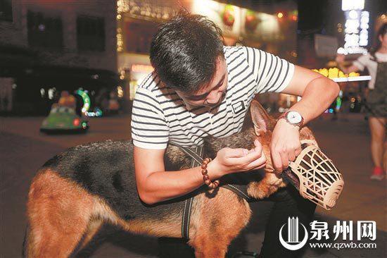 文明养犬,给狗戴狗罩。