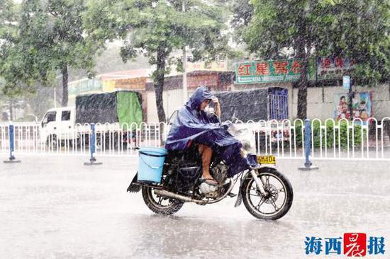 8月28日中午,集美锦园,行人在大雨中穿行。记者 唐光峰 摄