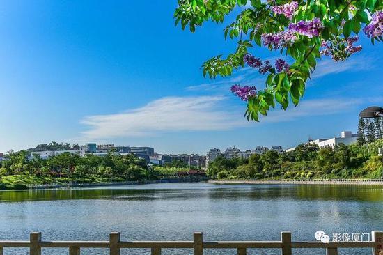 《水天一色》陈瑞坤/摄于火炬公园