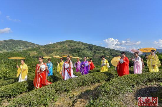 在南靖县书洋镇高山茶园上,村民和游客自编自导汉服秀、旗袍秀。