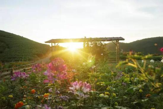 紫云山庄供图