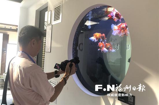 全国首家!塔巷国潮金鱼博物馆23日在福州开馆