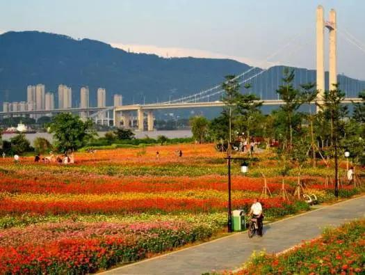地铁房·融侨造丨五大红盘,执掌福州城市核心资产