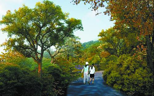 ■漆树园效果图