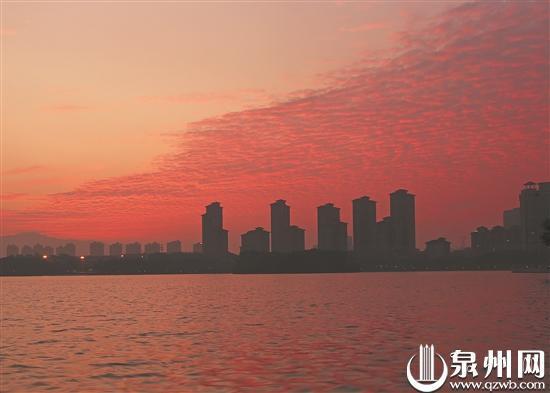 晚霞把泉州的天空渲染得格外美丽 (柏峰/摄)
