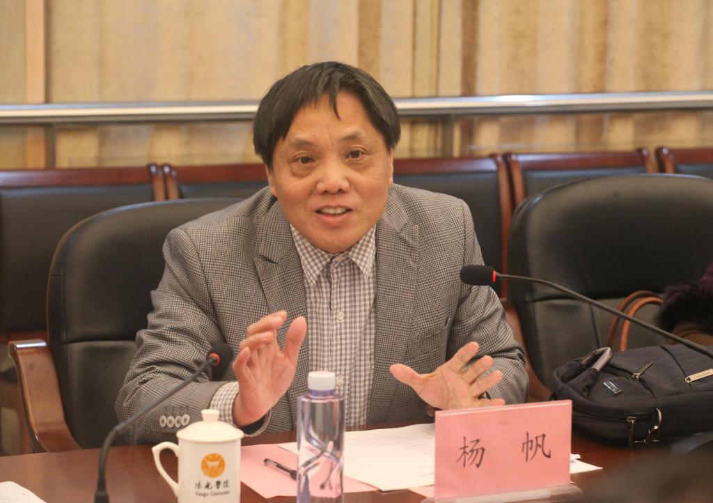 杨帆常务副秘书长发言
