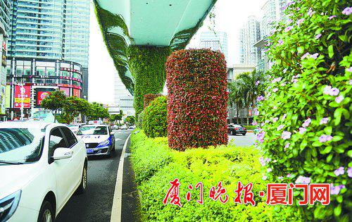 """BRT桥墩穿上了""""彩衣"""",花球花柱""""入住""""道路中分带。刘东华 摄"""