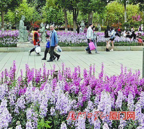 仙岳公园鲜花盛放,不少市民前往赏花。 (本报记者 吴君宁 摄)