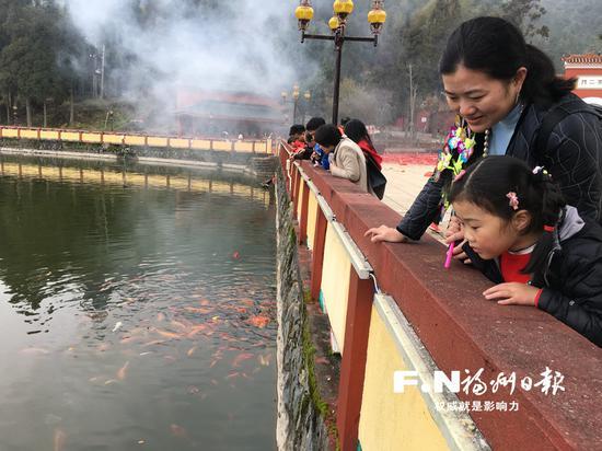 市民在雪峰寺看锦鲤。记者 黄凌 摄