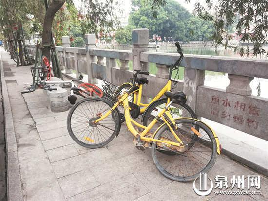 市区百宜巷乱停放的共享单车 (张九强 摄)