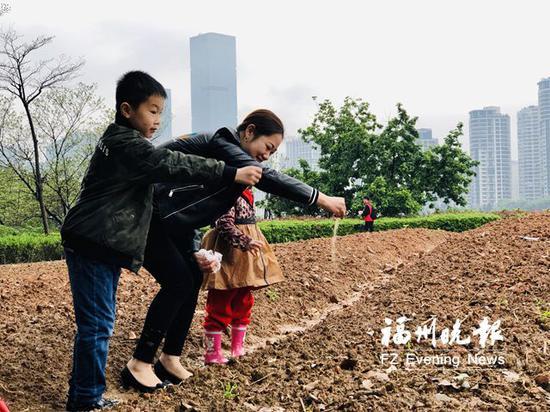 市民在花海公园播种。