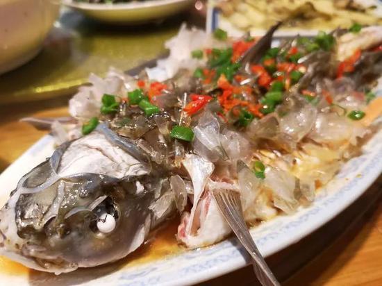 初恋鱼,鱼鳞都可以吃