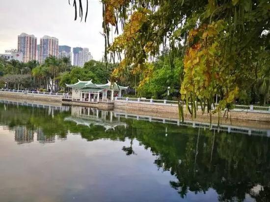 英国权威景观奖项揭晓 厦门这两座公园榜上有名