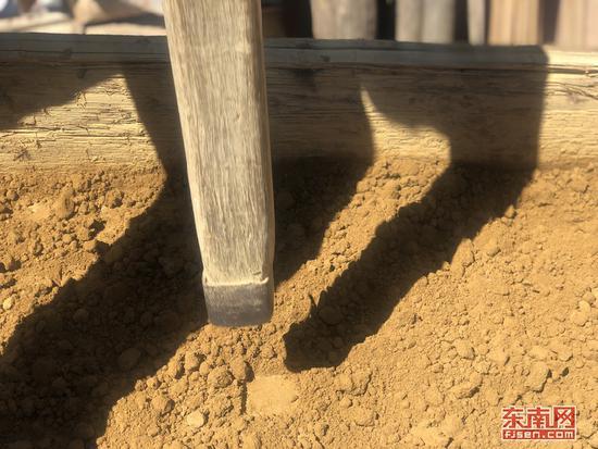 用木棒击实生土是土楼夯筑的重要工序之一。江峰 摄