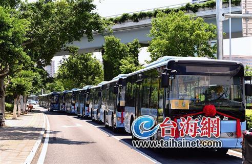 """数百辆""""蓝胖子""""节能又环保,今天起上路载客。"""