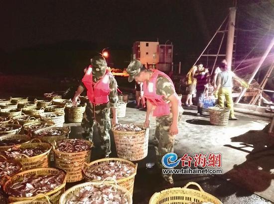 ◆边防官兵连夜帮忙抢收海鲜