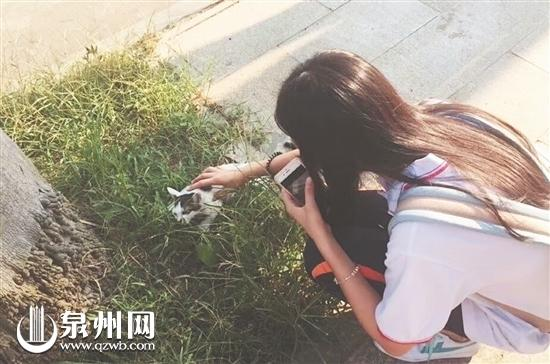 善良的小琪看见路边受伤的小猫小狗都很心疼(家属供图)