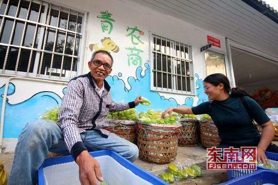 在云霄下河乡,农户正忙着给杨桃套袋装箱(江镇森 摄)