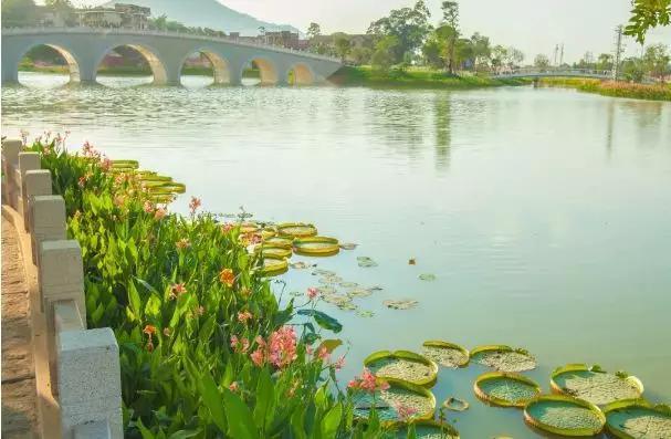 风景秀美的南湖(蔡文原 摄)