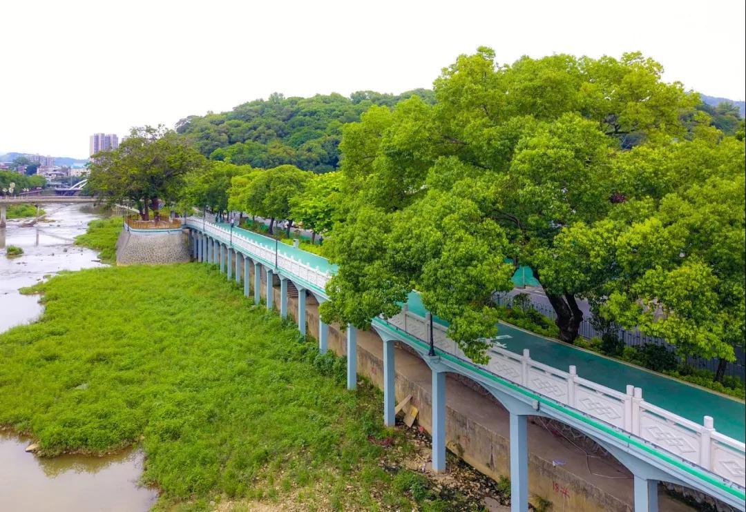滨河绿道|陈律全摄