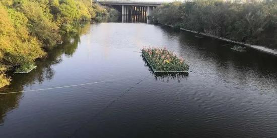 水清、河畅、岸美 翔安这条小溪大变样!