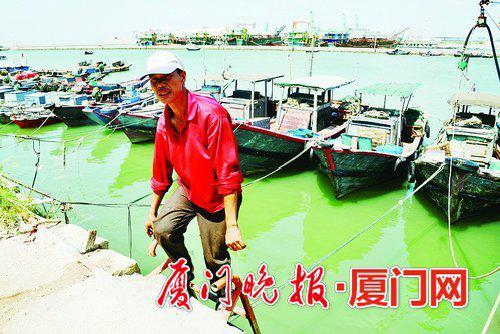 ■固定进港避风船只。刘东华 摄